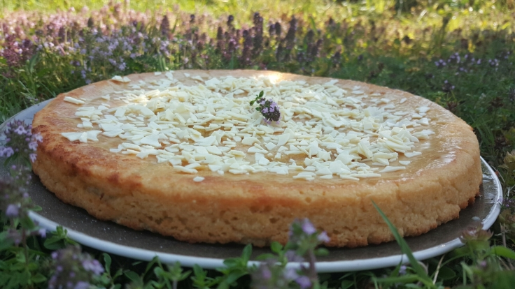 Gâteau au citron  : Une recette sans lactose indice glycémique bas